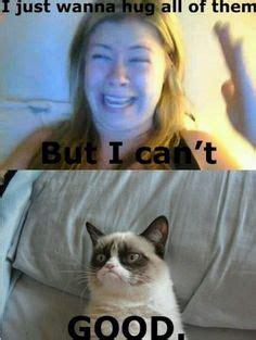 Eharmony Meme - eharmony cat lady got shut down p