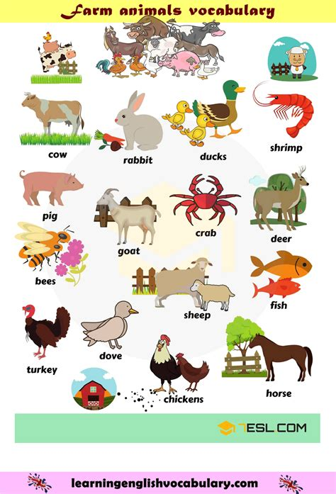 Pdf or read online from scribd. Farm animals houses vocabulary PDF | Idioma ingles ...