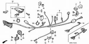 Wire Harness For 1999 Honda C90 C90  Cub