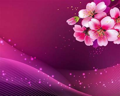 Blossom Cherry Icons Computer Wallpapers13