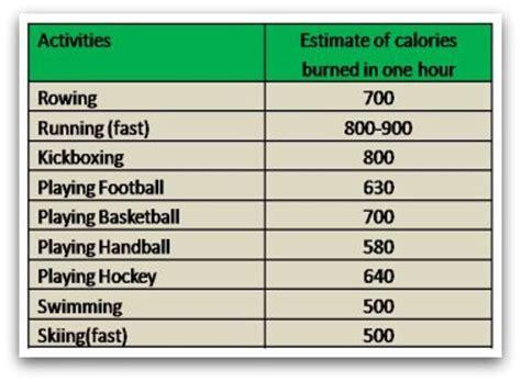 ppl routine reddit bodybuilding diet