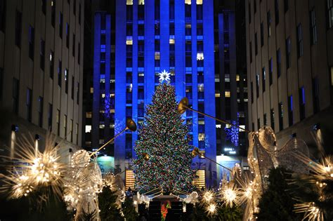 lighting of tree nyc 2014 rainforest islands ferry