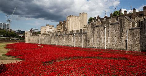 Britain honours the 888,246 World War 1 fallen with sea of ...