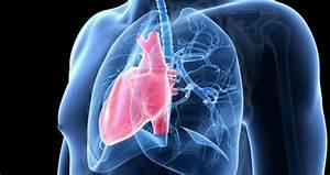 Пограничная артериальная гипертензия что это такое лечение