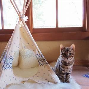 Tipi Pour Chat : cat tipi furries ~ Teatrodelosmanantiales.com Idées de Décoration