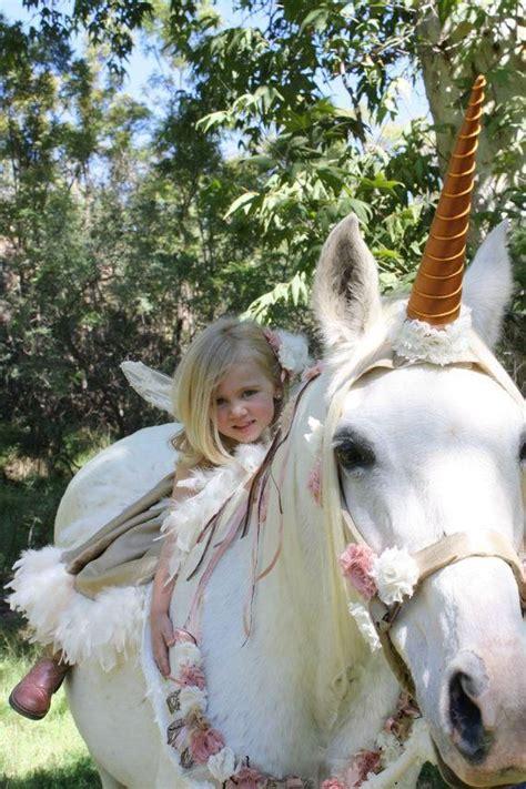 horse wearing  unicorn costume unicorn costumes