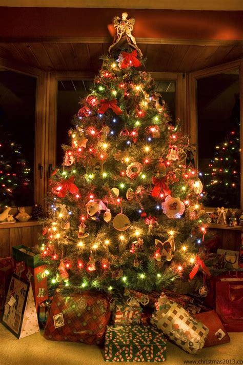 decorating trees with christmas lights christmas tree decorations ideas for 2013 30 tree images