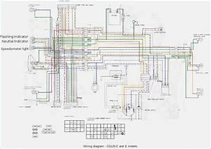Sunl 50 Wiring Diagram