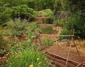 Que Planter En Juin : quels l gumes planter en juin ooreka ~ Melissatoandfro.com Idées de Décoration