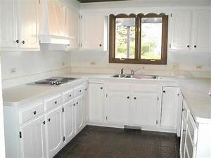 Painting kitchen cabinets white for cleanliness my for Kitchen cabinets painted white