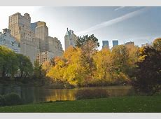 FileCentral Park during Autumn, NYCjpg Wikimedia Commons