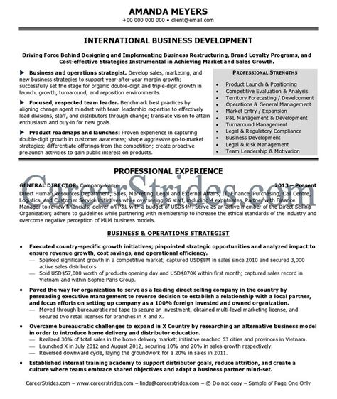 International Sales Resume Objective by International Business Resume Objective International Business
