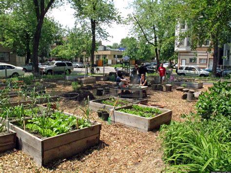 altgeld sawyer corner farm chicago community garden