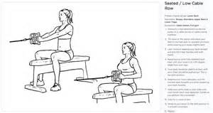 Seated Cable Row Exerc...