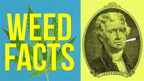 SHOCKING FACTS ABOUT WEED - A1FACTS