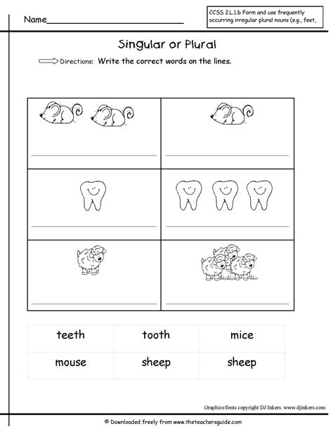 singular and plural nouns worksheets from the s guide