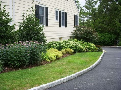 landscaping a driveway driveway landscape renovation traditional landscape new york by landscape design