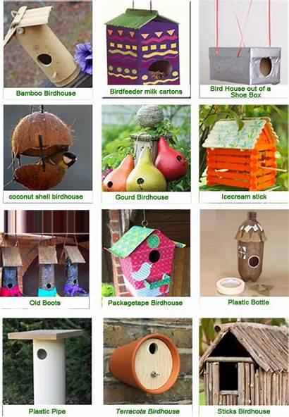 Bird Birdhouses Houses Garden Waste Material Animals