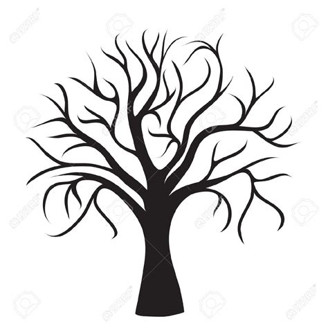 Tree Template Black And White by Arbol Sin Hojas Im 225 Genes De Archivo Vectores Arbol Sin
