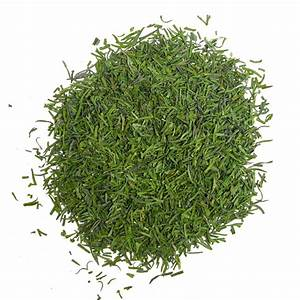 Dill Weed Dill Herb The Spice House