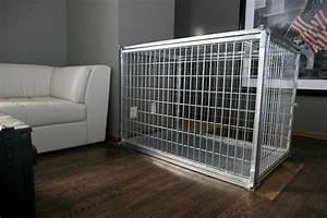 steel dog crates strongest heavy duty steel dog crates With steel dog crates kennels