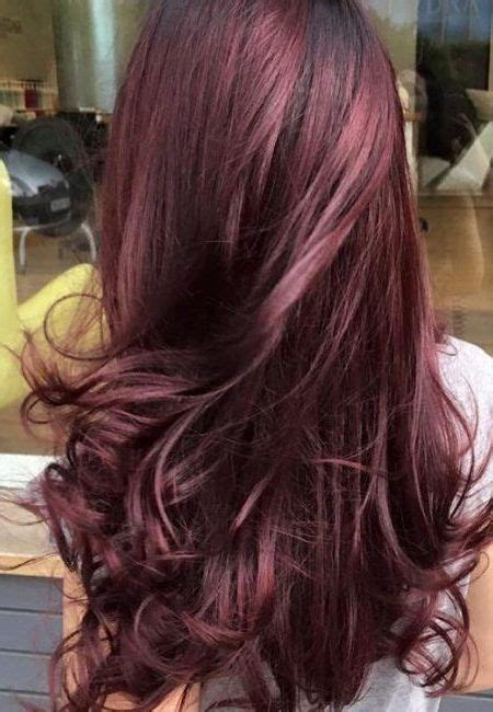 Best Hair Colors For Hair by Best 25 Black Cherry Hair Ideas On Black