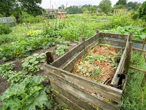 composting to improve poor soil saga