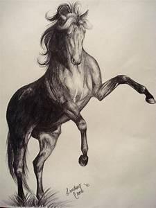 .:Pencil-Rearing Horse:. by PeaBlueJr on DeviantArt