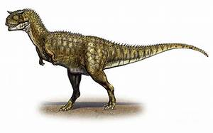 Carnotaurus Pictures & Facts - The Dinosaur Database