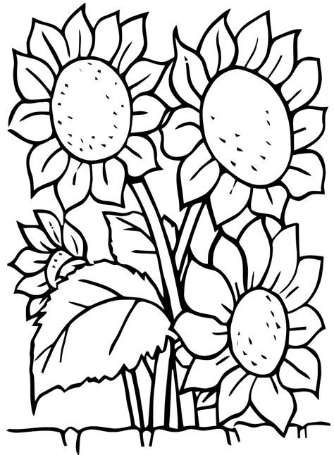 Coloring Flower by Flowers Free To Color For Flowers Coloring Pages