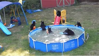 Pool Summer Backyard Unbearably Mother Blame Them
