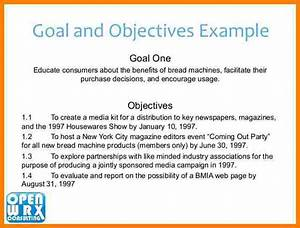 9 business plan objectives introduction letter for Company goals and objectives template