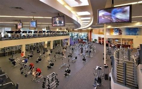 Gold's gym business plan