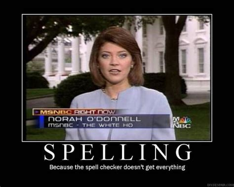 Spelling Police Meme - 1000 images about funny grammar on pinterest