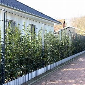 Sichtschutzmatten Für Zäune : doppelstabmatte 160cm anthrazit ~ Articles-book.com Haus und Dekorationen