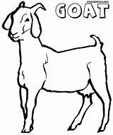 Goat Coloring Pages Printable Colouring Template Clipart Sketch Milking Templates Animal Clip sketch template