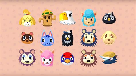 animal crossing pocket camp hd wallpaper background