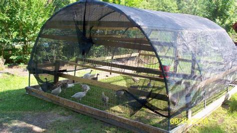 turkey coop designs turkey tractors
