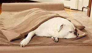 tripawds gear big barker most comfortable dog bed for With big barker large dog bed