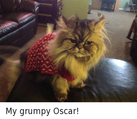 2++'似 N My Grumpy Oscar!  Oscars Meme On Sizzle