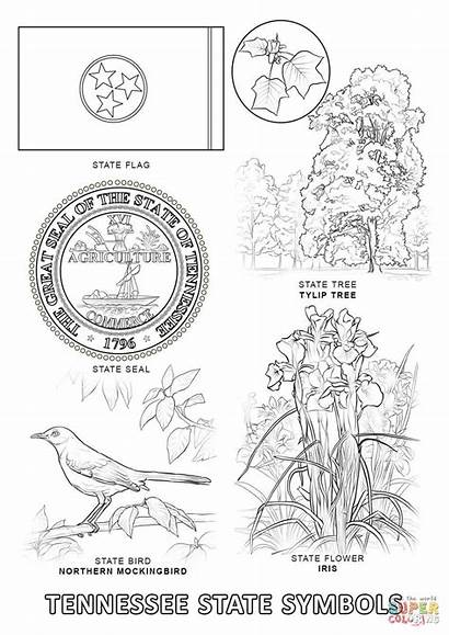 Coloring Tennessee State Symbols Pages Printable Alabama