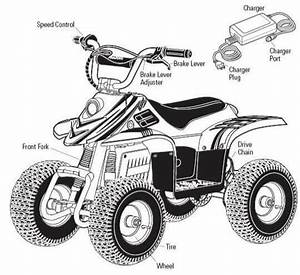 Wiring Diagram Quad Bike