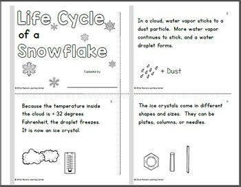 life cycle   snowflake booklet  mamas learning