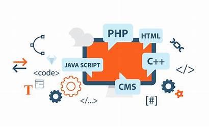 Dynamic Website Designing Web Websites Services Company