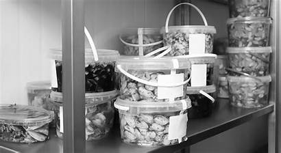 Tcs Foods Handling Tips Storage Storing Restaurant
