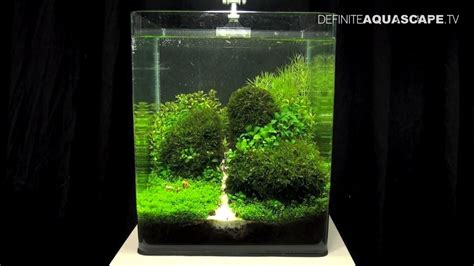 nano aquascapes aquascaping the of the planted aquarium 2013 nano pt