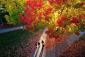 Campus Life | Admission | Bates College  Bates