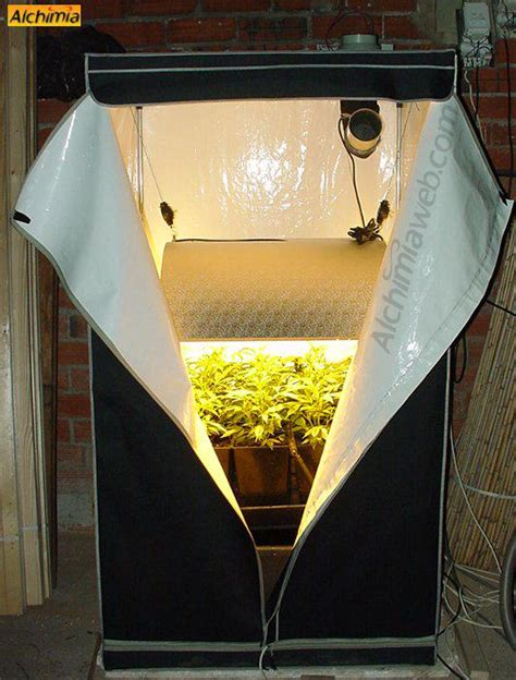 humidifier une chambre culture interieur de cannabis du growshop alchimia