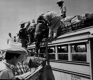 Operation Wetback, the 1950s immigration policy Donald ...