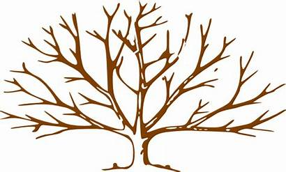 Tree Leaves Clipart Trunk Bare Trees Clip